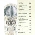 Atlas Giải Phẫu Đầu Mặt